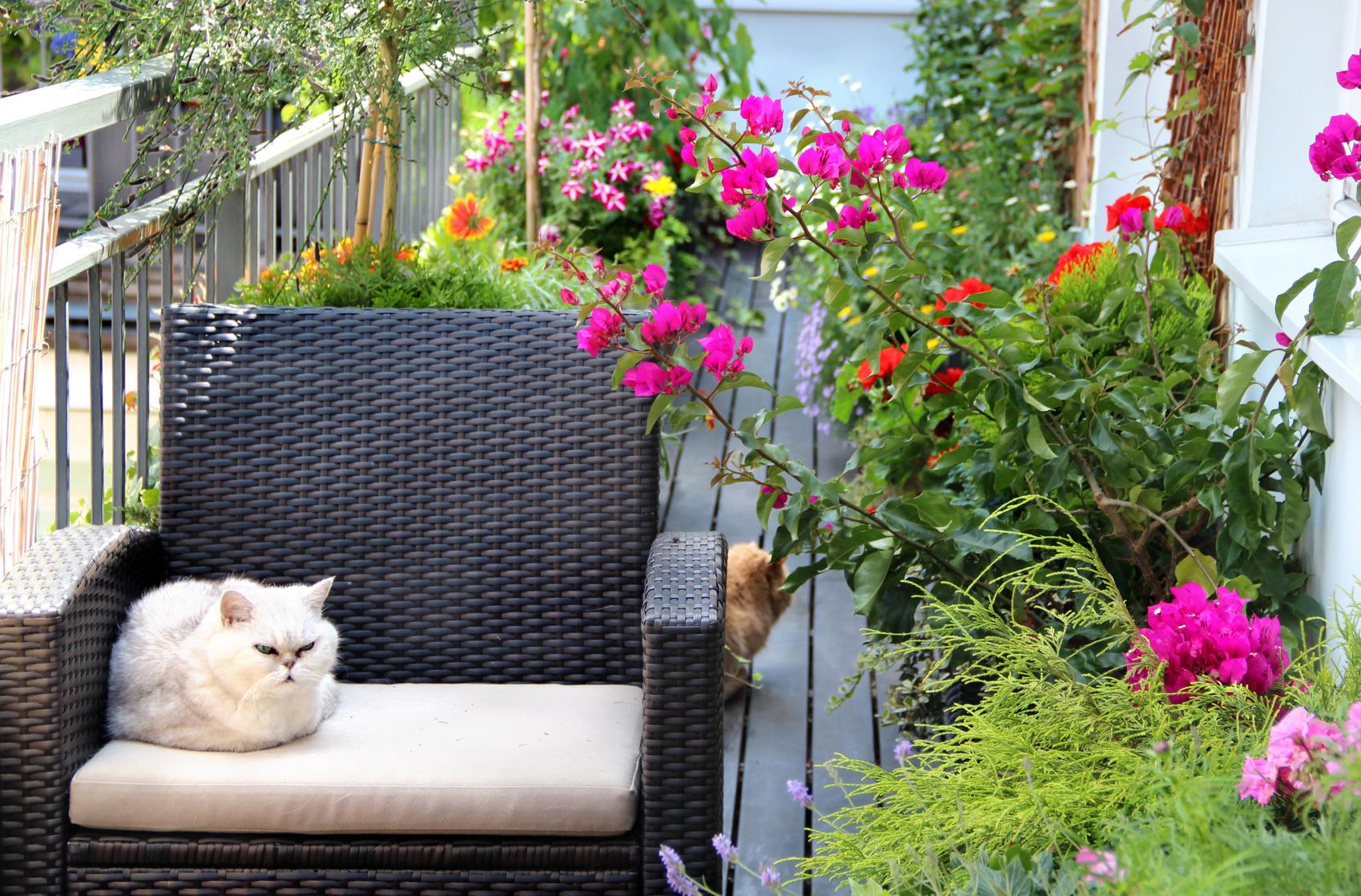 Der Schone Balkon Ideen Und Tipps Zum Selbermachen Farbe Erleben